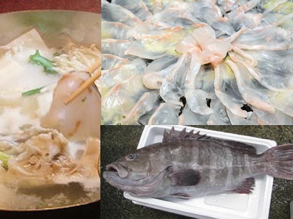 幻の高級魚クエ鍋コース